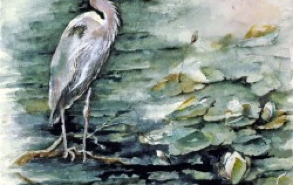 Heron with Lillies