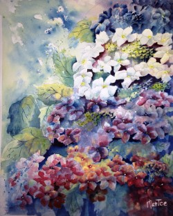 Hydrangea Vertical View with White (sold)