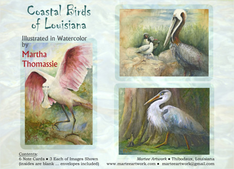 Coastal Birds of Louisiana